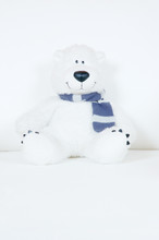 Fluffy White Teddy Bear With S...