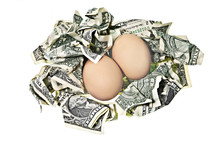 Two Eggs In Nest With Money