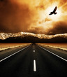 Leinwanddruck Bild The open road and the soaring bird