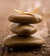 Leinwandbild Motiv Pile of brown massage stones on wooden background
