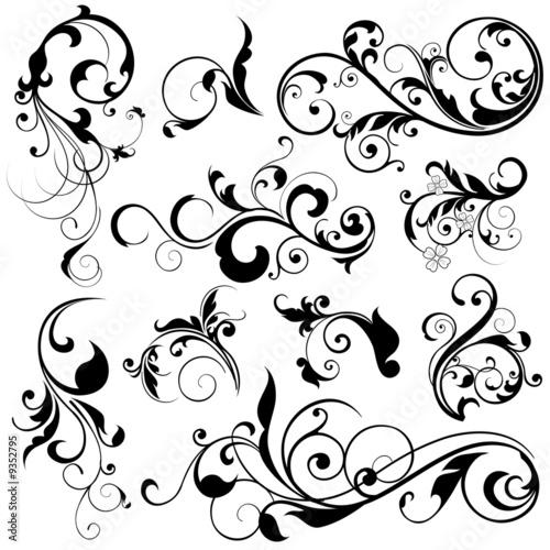 Fotografía  floral design elements