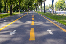 City Bike Lane Along Shady Wooden Street