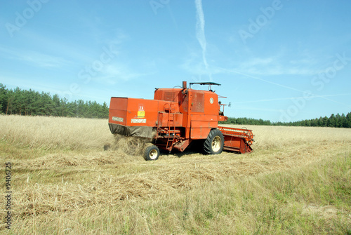 Photo  red combine harvester harvesting a grain field