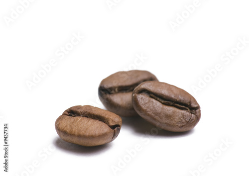 Fotografie, Obraz  Three coffee beans isolated on white background