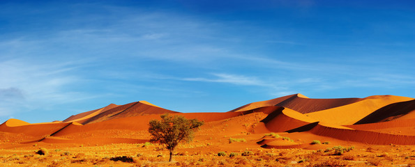 Fototapeta na wymiar Dunes of Namib Desert at sunset, Sossusvlei, Namibia