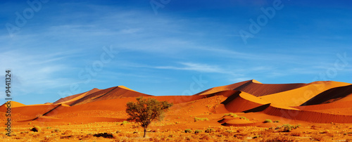 Photo sur Toile Desert de sable Dunes of Namib Desert at sunset, Sossusvlei, Namibia