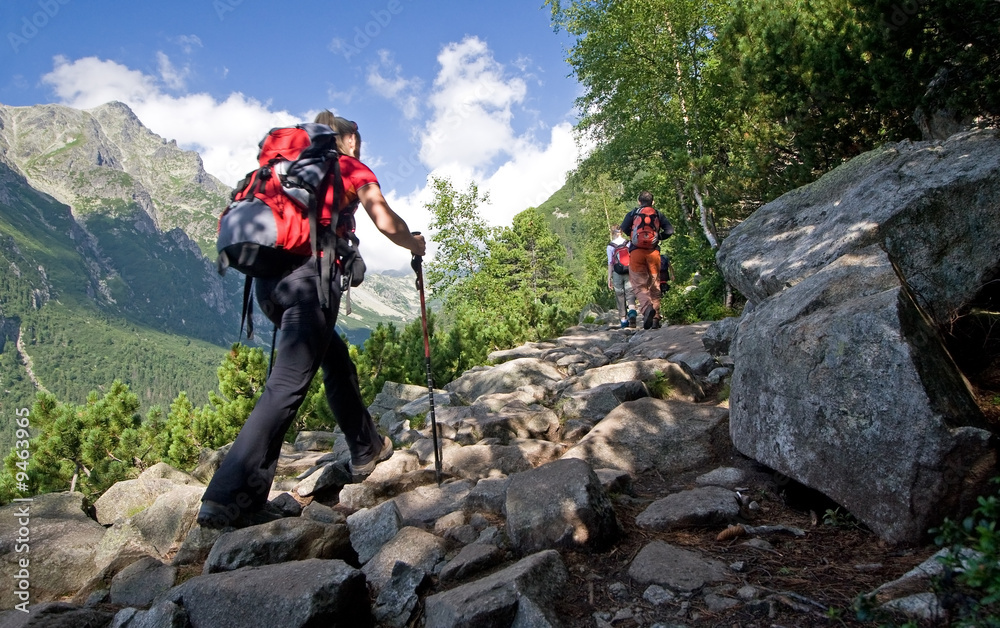 Fototapety, obrazy: Nordic walking in mountains. Young female.