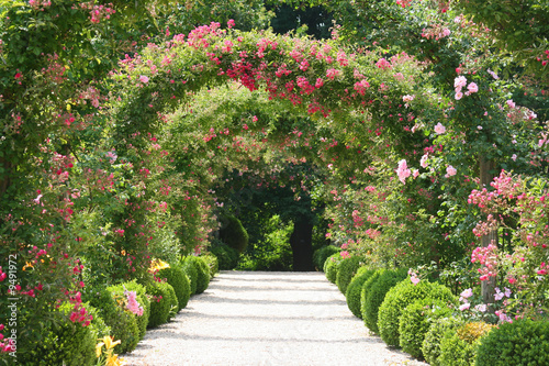 Recess Fitting Garden Roses Arch in the Garden
