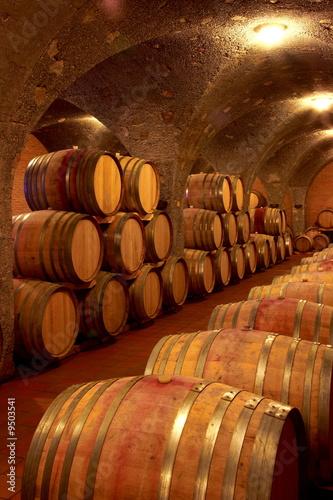 Weinkeller,Rotwein im Barrique Faß ausgebaut,Toskana,Italien Billede på lærred