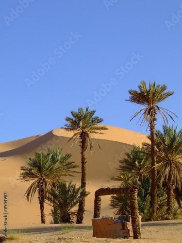 Türaufkleber Algerien TAGHIT - ALGERIA