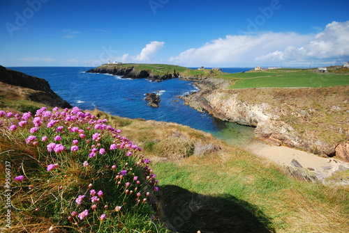 Spoed Foto op Canvas Kust Seacoast of Ireland