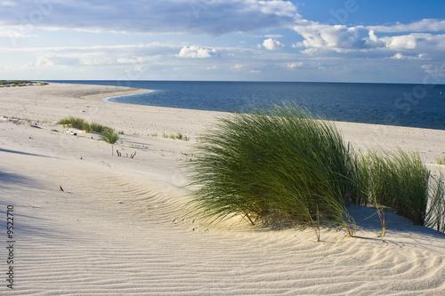 Keuken foto achterwand Noordzee Gras am Strand