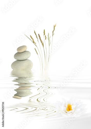 Fototapety, obrazy: Zen Balance