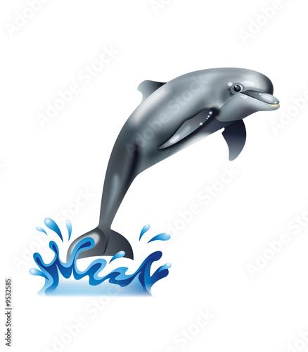 Foto op Plexiglas Dolfijnen Friendly looking cute dolphin in leap