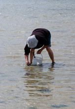 Man Clam Digging  At The Beach