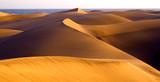 The great desert Dunas de Maspalomas in Gran Canary