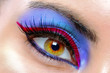 canvas print picture - The macro beautiful female eye
