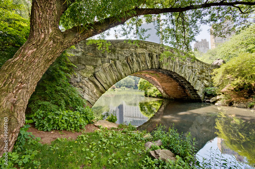 Tuinposter Bruggen A stone bridge, Gapstow Bridge, in Central Park, NY.