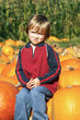 canvas print picture - Cute young boy sitting on a pumpkin at the pumpkin patch