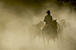 canvas print picture Single Cowboy with rope and horses in the dust