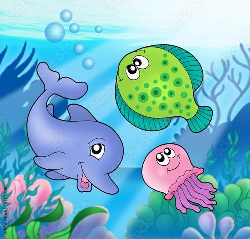 Foto-Plissee - Cute marine animals (von Klara Viskova)