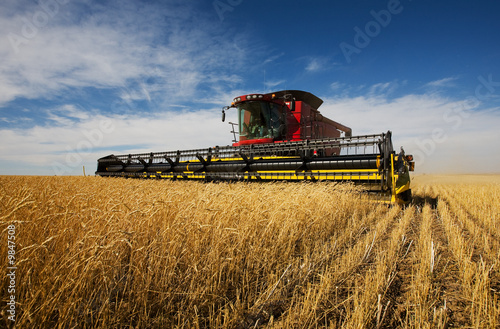 Photo modern combine harvester working on a wheat crop