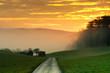canvas print picture - Morgensonne