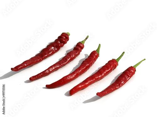 Photo  piments rouges