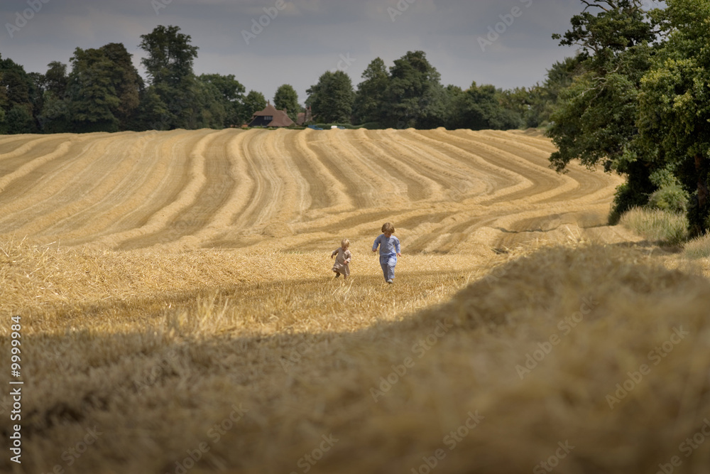 Fototapeta two boys playing in a summer field during harvesting
