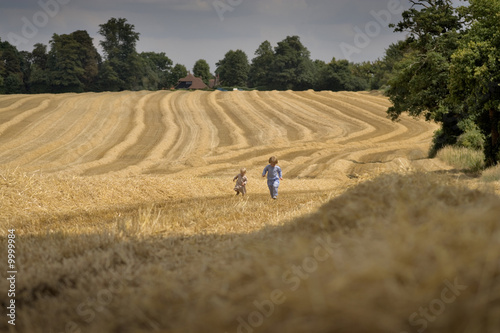 Obraz two boys playing in a summer field during harvesting - fototapety do salonu