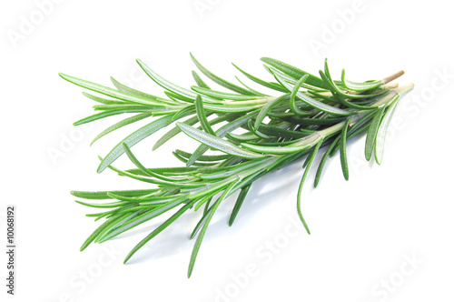 Tablou Canvas fresh rosemary isolated on white