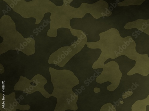 Fotomural  camouflage background