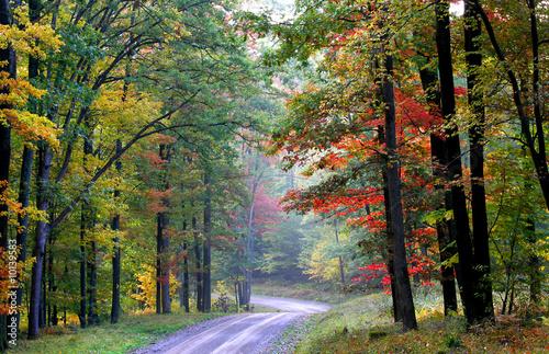 Photo Scenic Trail
