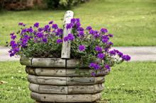 Wooden Basket Of Purple Flower...
