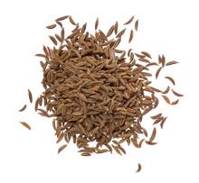 Seeds Of Dried Caraway Closeup...