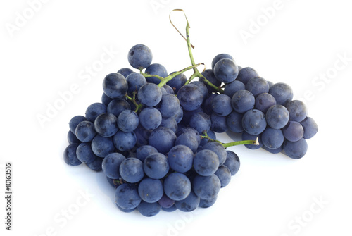 Fotografiet purple concord grapes isolated on a white background