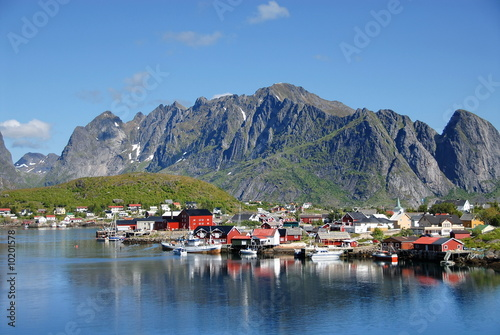 Garden Poster Scandinavia Lofoten Islands