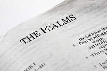 A Macro Detail Of The Book Of Psalms