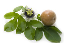 Close Up Passion Fruit And Passionflower On White Background..