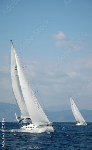 Garden Poster Sailing two white yachts sail in the sea