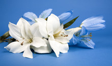 White Artificial Lilly Flower ...