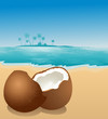 canvas print picture - Coconut on the beach, vector illustration