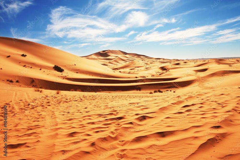 Fototapeta Deserts dune
