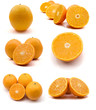 page of oranges isolated on the white background