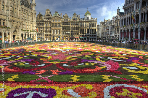 Foto op Canvas Brussel brussels carpet