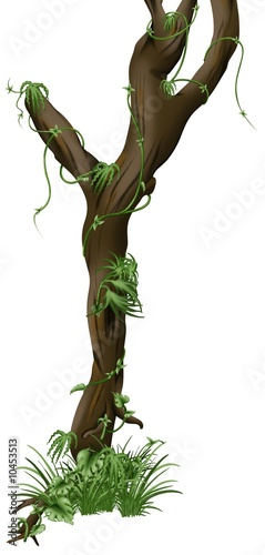 Cuadros en Lienzo Tree A03 - isolated hand drawn tree with creepers plants