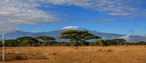 Canvas Prints Africa Kilimanjaro Wide