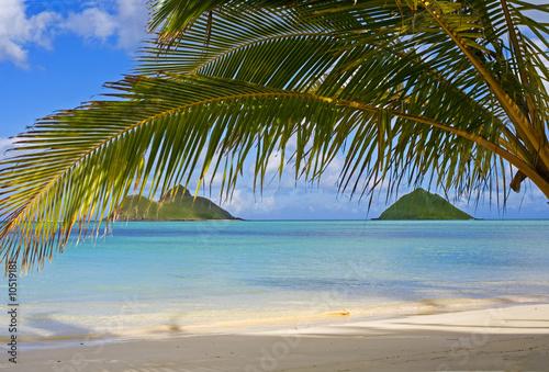 Foto-Leinwand - the mokulua islands off lanikai beach, oahu, hawaii