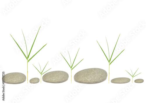 Doppelrollo mit Motiv - Bamboo Grass and Six Pebbles (von marilyn barbone)
