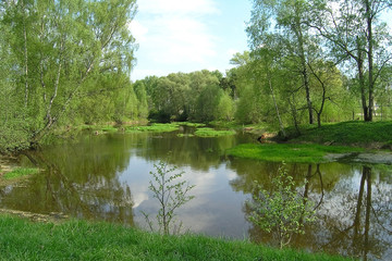 Fototapeta na wymiar Tranquillity on the small river in Russia countryside
